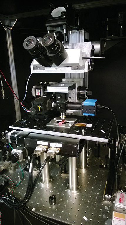 Pump-probe microscope