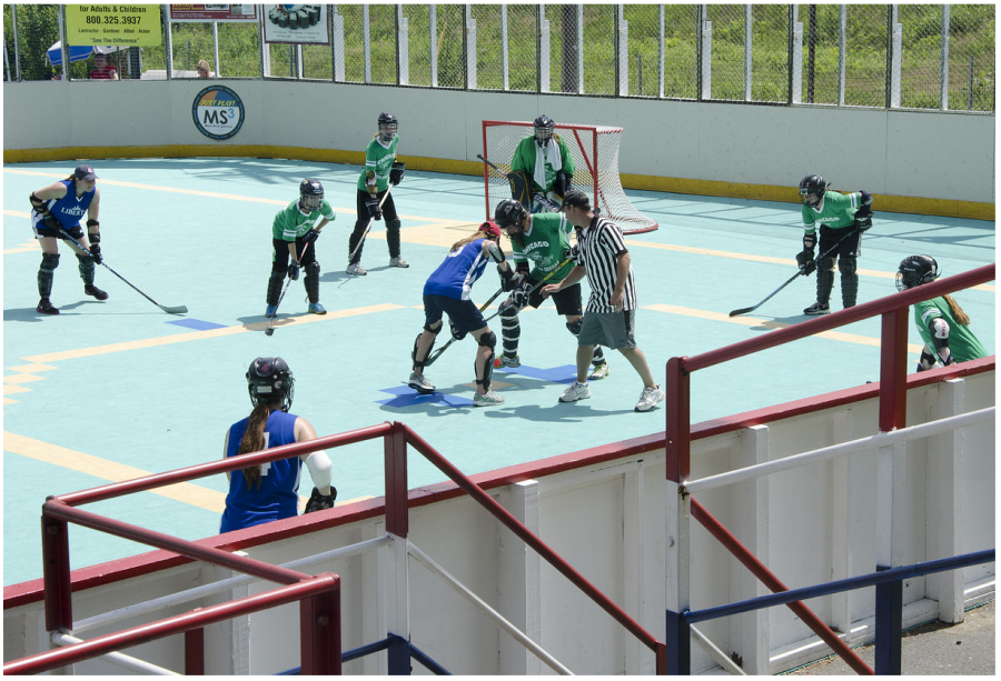 The Chicago Lady Cobras surprised fans and competitors in last year's Women's U.S. Nationals dek hockey tournament in Leominster, Massachusetts as the first and only team from the Midwest to compete and took third place.