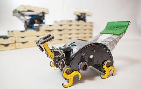 Termite-bots building a future
