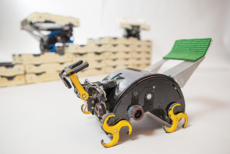 Termite-bots+building+a+future