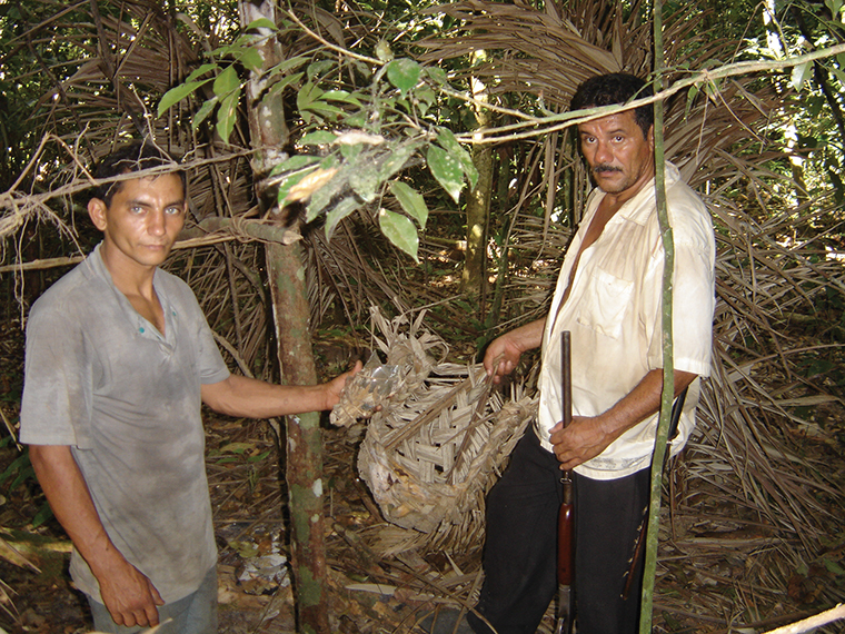 Members of the Guajá tribe in the eastern Amazon isolate themselves from the industrialized world but wear modern clothing, showing that modern society has already encroached on their way of life.