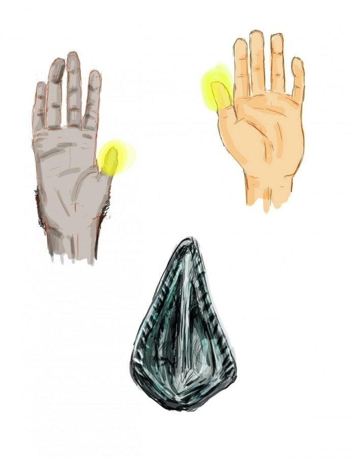 Non-dominant hand influences thumb's evolution