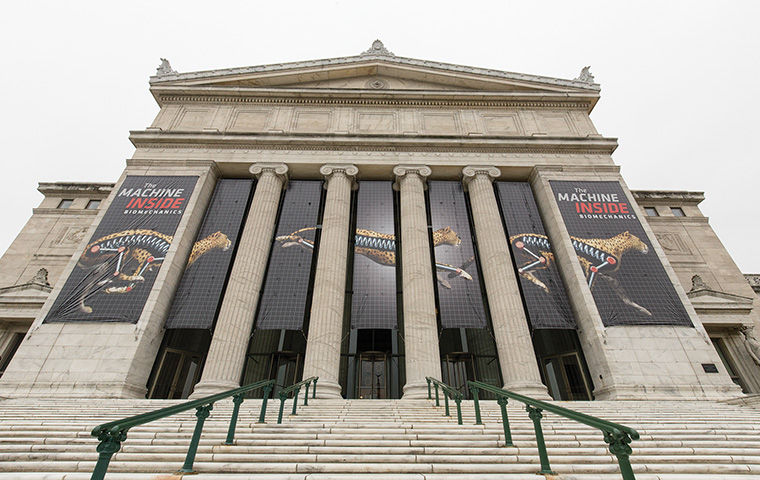 Boeing gifts $3 million to Field Museum