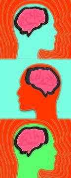 Psychiatric risk gene, in detail