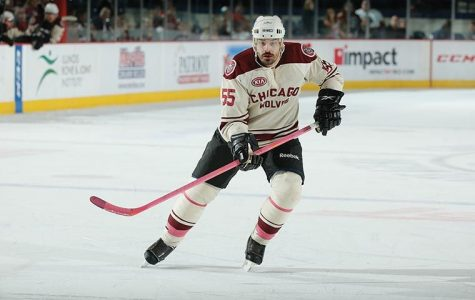 Chicago Wolves defenseman Brent Sopel skates Oct. 18 during breast cancer awareness night game against the Lake Erie Monsters at Allstate Arena in suburban Rosemont.