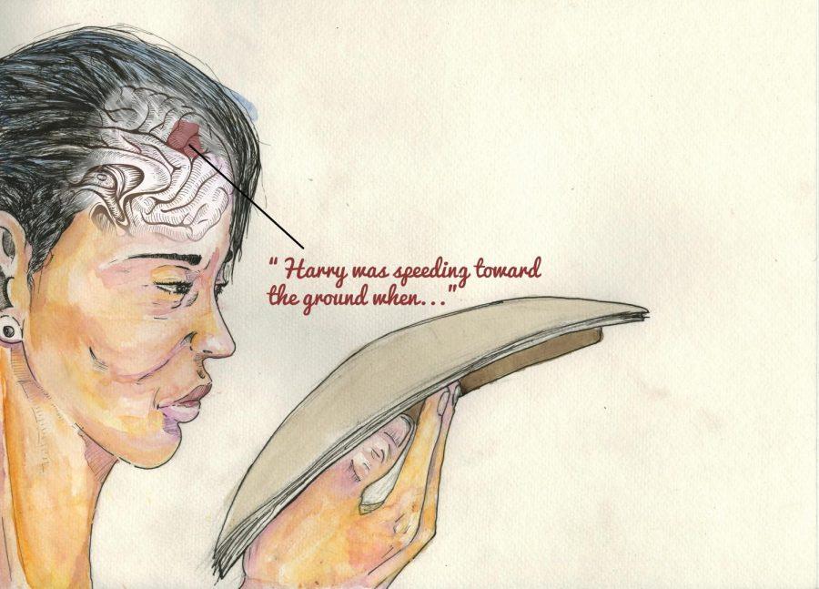 Novel+brain