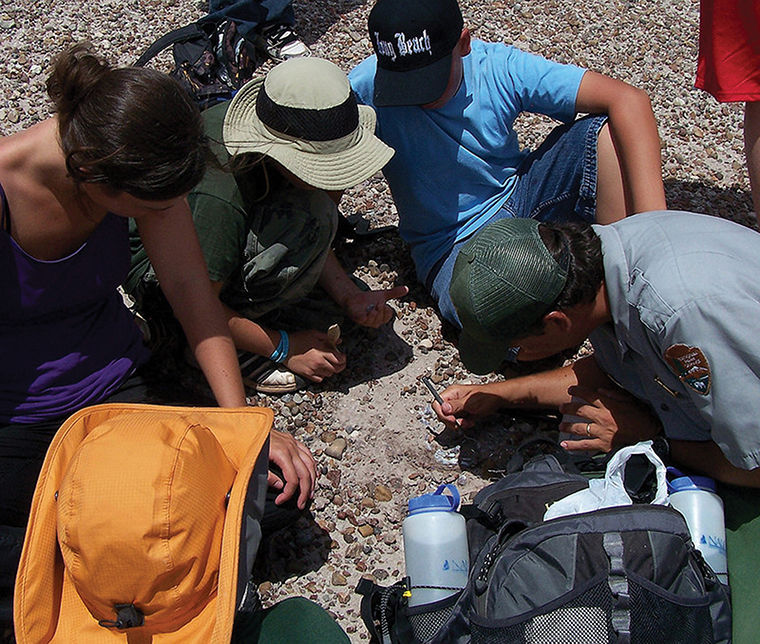 Honors students will spend two weeks in Petrified Forest National Park collecting fossils, data and field experience.