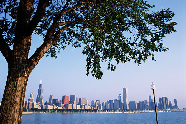 Mayor Rahm Emanuel recently announced a new initiative with the Chicago Park District and the Department of Streets & Sanitation to plant 11,800 new trees citywide.