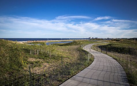 New Northerly Island preserve gives peaceful perspective on city