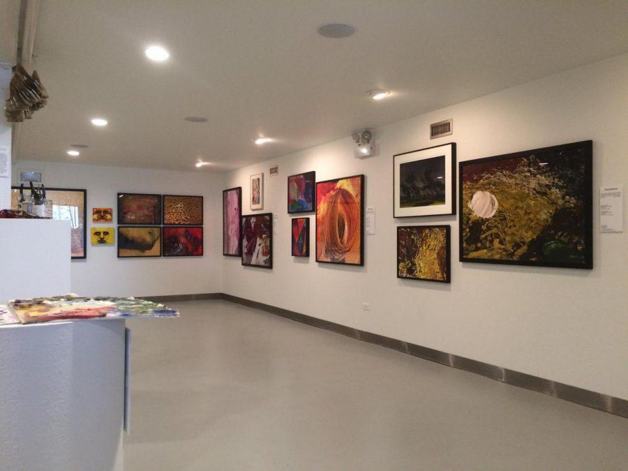 La Palette' exhibit blends photography, painting, neurology