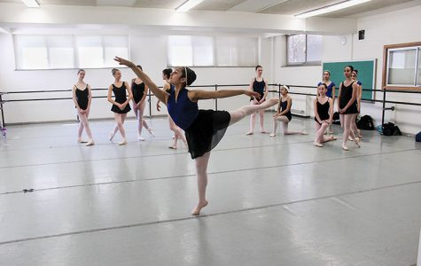 Chicago Ballet Arts shows kindness with anniversary