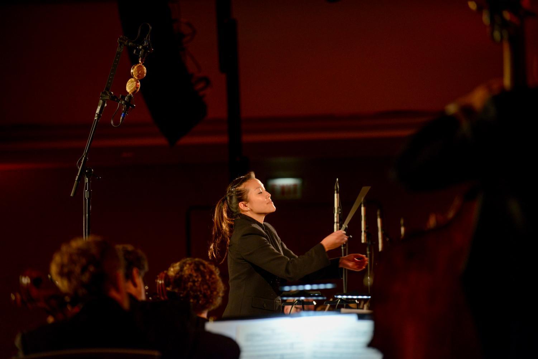 2016 Annual Ball Chicago Sinfonietta - 6/4/16 Photo by Chris Ocken Copyright 2016 - http://www.ockenphoto.com/