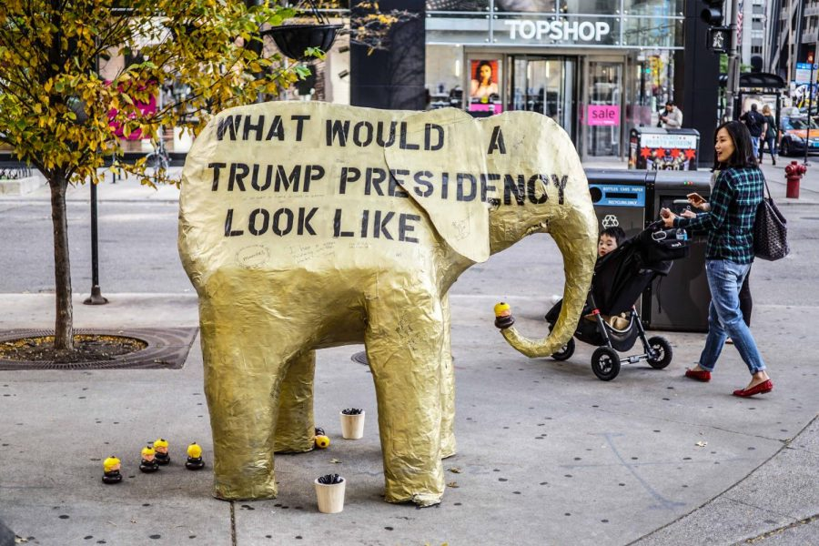 Local+arts+collective+Birch+Reincliff+has+sold+more+than+300+Donnie+the+Poo+dog+toys+on+its+website%2C+which+represent+a+Trump+head+sitting+atop+a+pile+of+feces.%C2%A0