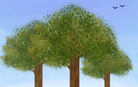 Wicker Park, Bucktown plant 'greener' neighorhoods