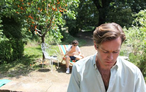 'Call Me by Your Name' is an ode to first love, new beginnings