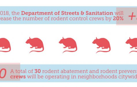 Nation's 'rattiest city' steps up rodent control