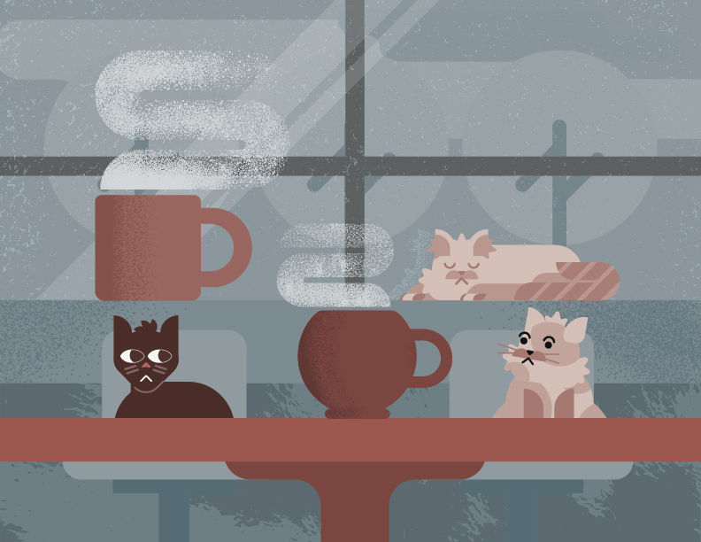 Windy City Kitty Café the newest of its breed