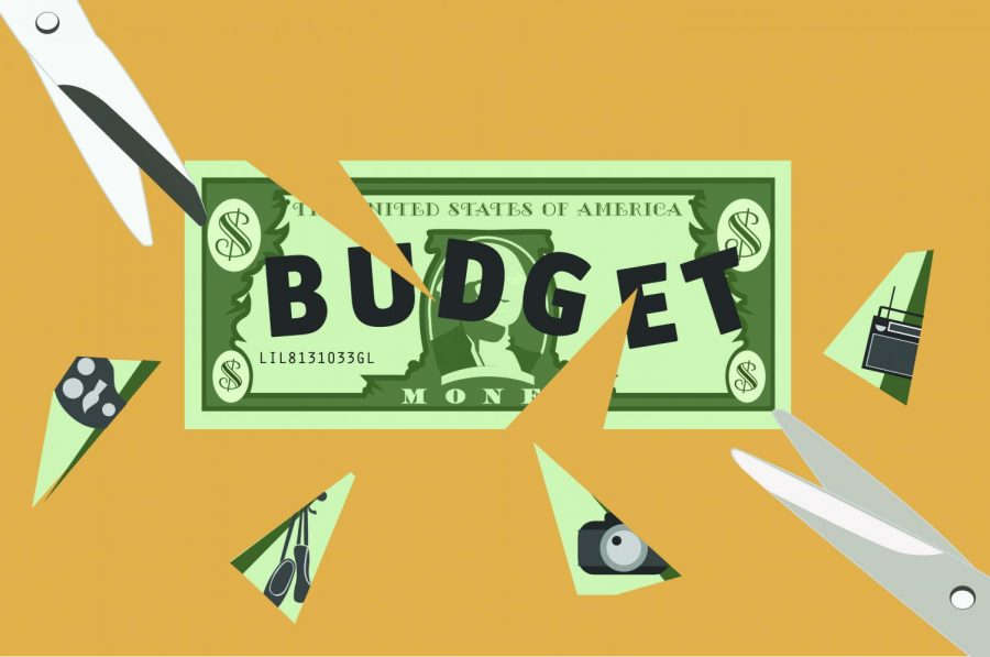 Student resources sliced by budget cuts