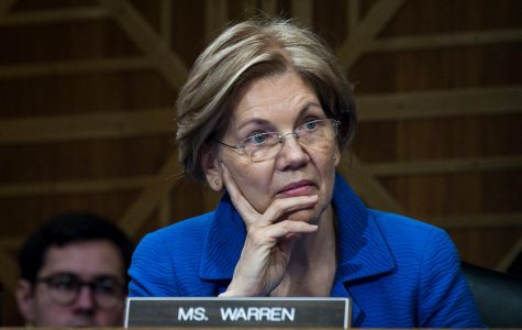 Elizabeth Warren's DNA test insults Native Americans