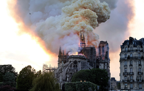 Lessons from Notre Dame