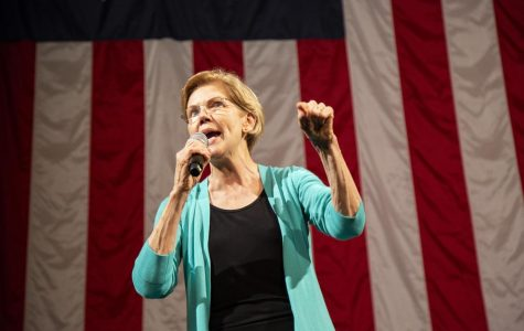 'A president can do it all by herself': Warren talks big structural changes