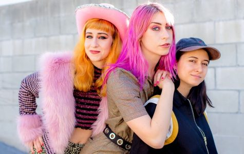 Punk trio Potty Mouth finds identity through latest album