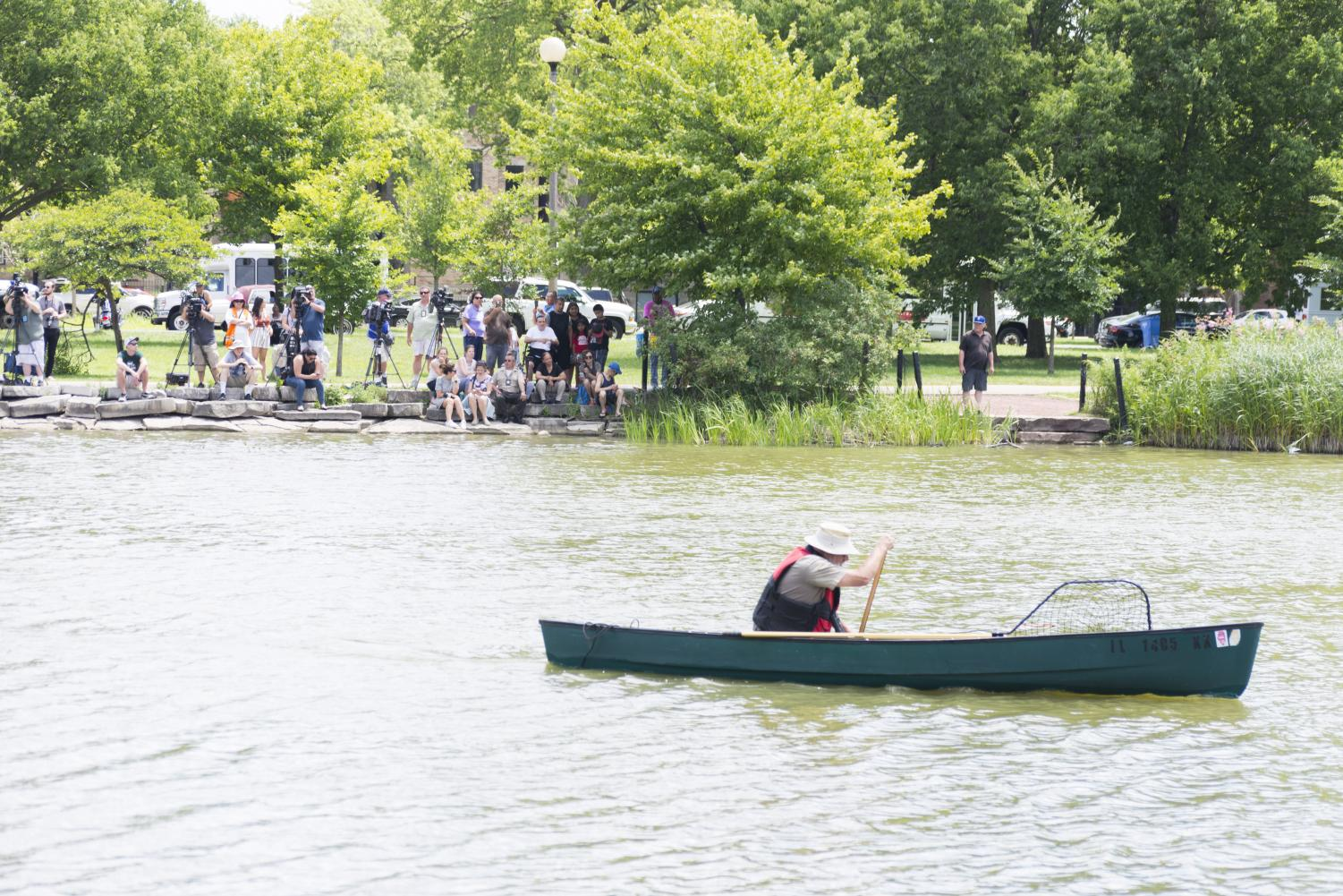 Members+of+the+media+and+other+spectators+watch+as+Alligator+Bob+paddles+across+Humboldt+Park+Lagoon.