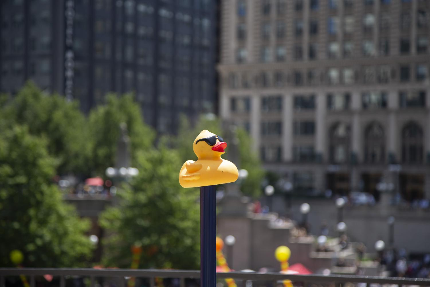 Chicago+held+its+14th+annual+Ducky+Derby+charity+event+Thursday%2C+Aug.+8%2C+at+the+Chicago+Riverwalk.+