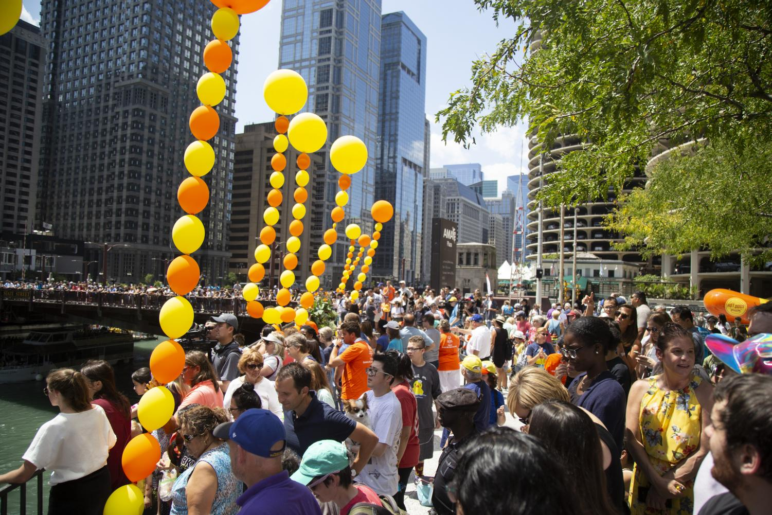 Over+63%2C000+rubber+duckies+were+dumped+into+the+Chicago+River+to+raise+funds+for+the+Illinois+Special+Olympics.