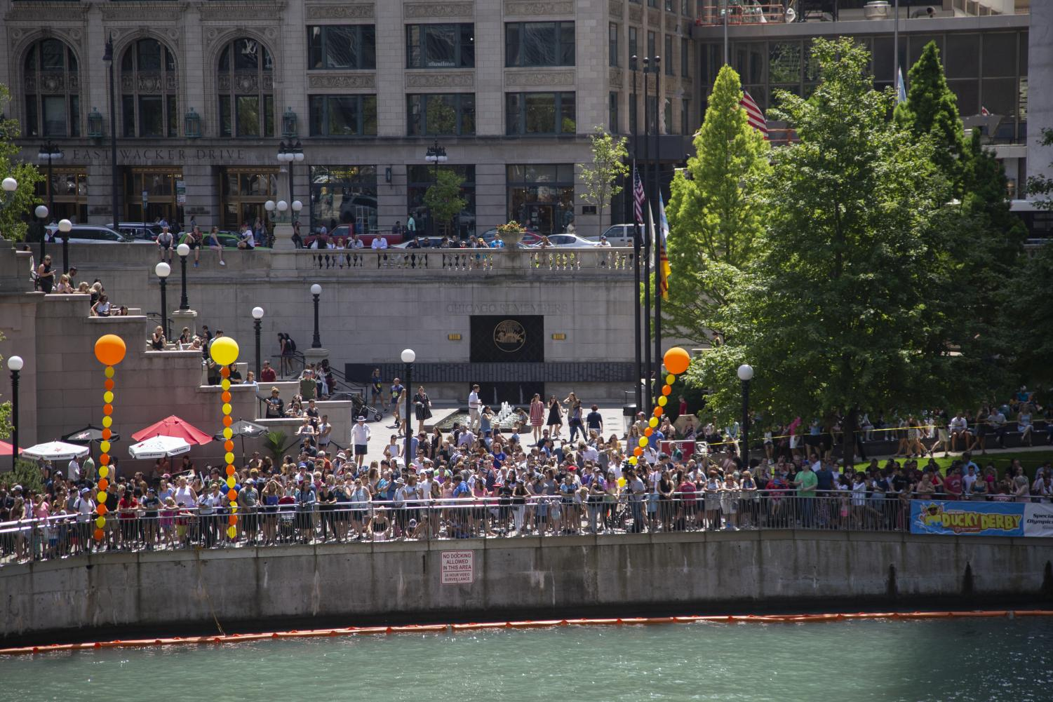 Ducky-owners+and+spectators+cheered+from+the+Riverwalk+as+the+duckies+were+dumped+into+the+river.