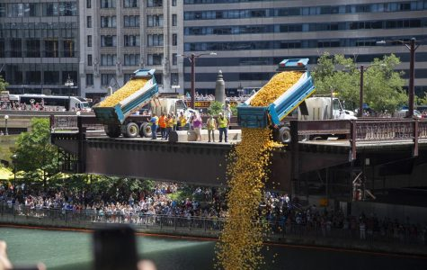 Chicago dumps over 63,000 rubber ducks into the river for charity