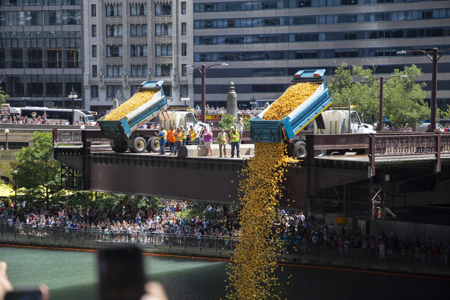 Over+63%2C000+rubber+duckies+were+dumped+into+the+Chicago+River+from+the+Wabash+Bridge+Thursday%2C+Aug.+8.