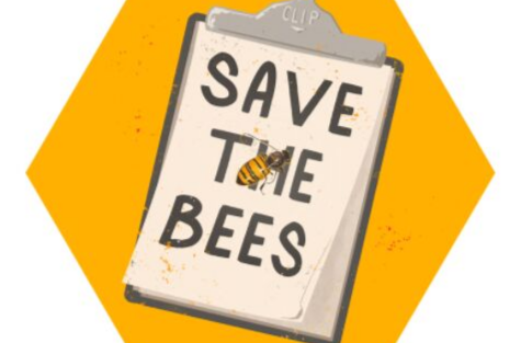 No bees, no food: Chicagoans are abuzz about saving bees