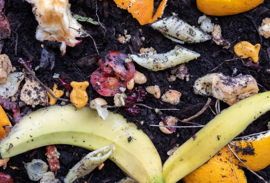 Confusion surrounding composting initiatives at college, University Center