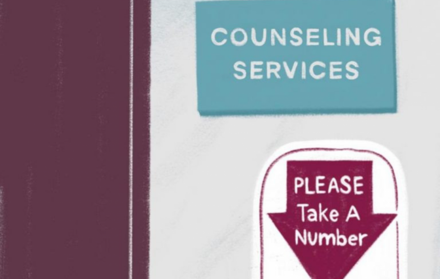Public colleges to provide mental health services similar to Columbia's