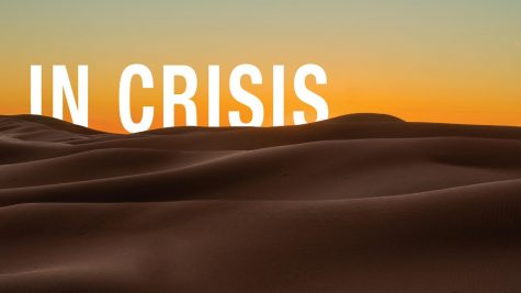 In crisis: desertification threatens a way of life in the Sahara Desert