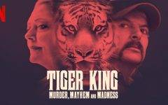 Review: The many issues with the Netflix docu-series 'Tiger King'