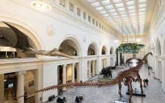 Dinosaurs and birds and bones, oh my: The Field Museum reopens