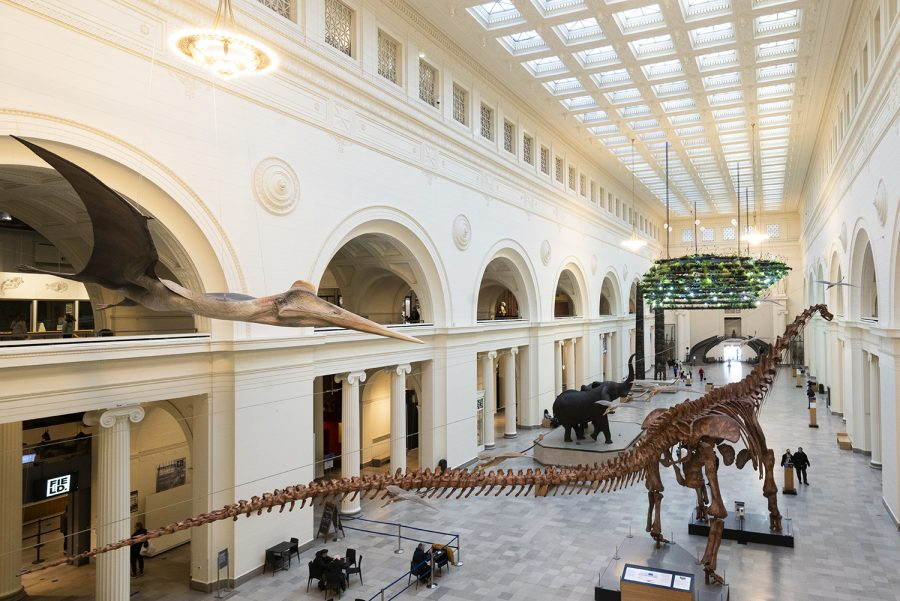 The museum is open to only 25% capacity to avoid large crowds of people hindering social distancing practices.
