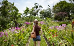 Rainbow Beach Victory Garden offered free tours for Humanities Festival attendees July 24.