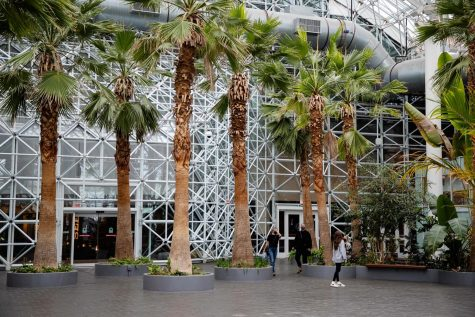 With the gardens fate in jeopardy, patrons visit the indoor garden for what may be their last time.